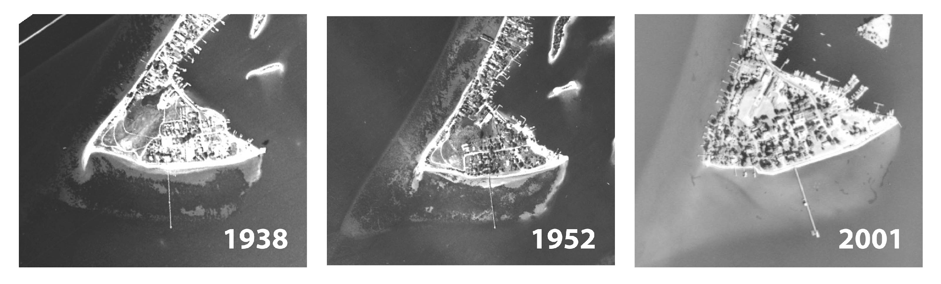 Time series photo collage showing disappearance of SAV off Solomons, Maryland.